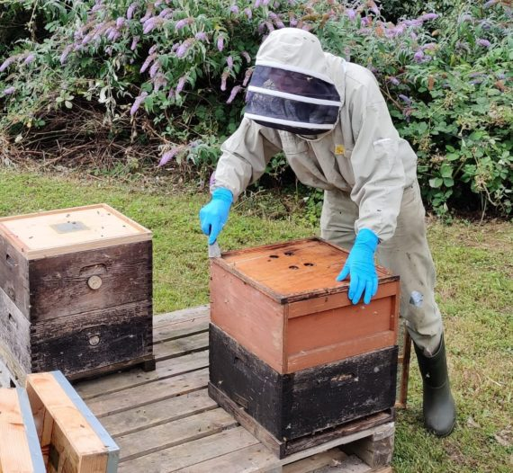 Eric the beekeeper